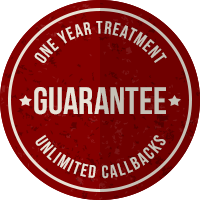 1 Year Porirua Ant Treatment Guarantee