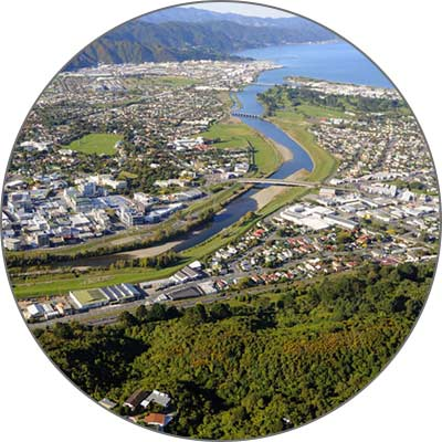 Lower Hutt Ant Control Services